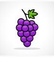 grapes design icon vector image