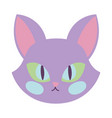 happy halloween celebration cat face purple color vector image