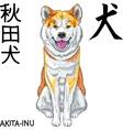 sketch dog Akita Inu Japanese breed smiles vector image vector image