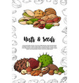natural nuts and seeds template hand drawn vector image vector image