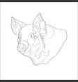 pig pig head line vector image