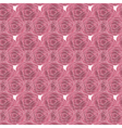 Pink Rose pattern vector image