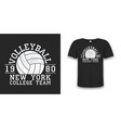 volleyball new york grunge print for apparel vector image