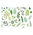 bright green sketch leaves and branches set vector image vector image