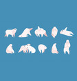 collection of adorable amusing polar bear in vector image