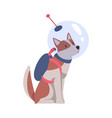 cute dog in astronaut costume funny pet animal