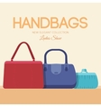 fashion handbags and bags in flat vector image vector image