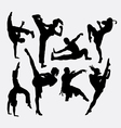 Kungfu martial arts silhouettes vector image