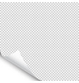 small curled page corner with shadow on vector image vector image