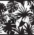 tropic in black and white colors vector image