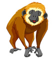 Brown gibbon with happy face vector image vector image