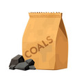 charcoal bag for barbecue grill cartoon vector image vector image