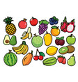 fruits set collection vector image