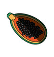 isolated papaya fruit vector image vector image