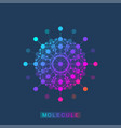 molecule logo template icon science genetics vector image