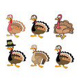 thanksgiving turkey set vector image
