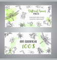 bugs insects hand drawn gift certificate pest vector image vector image