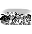 coffee plantation vector image vector image