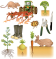 Farming and agriculture vector image vector image