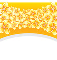 floral background with frangip vector image