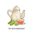 tea with bergamot - healthy hot beverage in glass vector image vector image