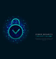 data protection design with padlock and check vector image vector image