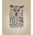 design owls vector image
