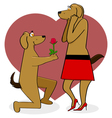 Dogs in love vector image