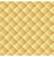 Golden texture background Leather seamless vector image vector image
