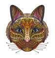 ornamental cat vector image vector image
