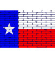 texan painted wall flag vector image