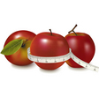 three red apples vector image vector image