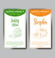 vegetable food banner iceberg lettuce and pumpkin vector image vector image