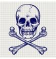 Skull and crossbones ball pen sketch vector image