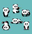 cartoon color cute panda icon set vector image vector image