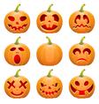 Collect Pumpkin for Halloween vector image vector image