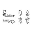 flowers linear logo set floral design elements vector image