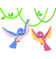set of cute little colorful birds isolated on vector image