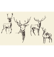 Set of deers engraving vintage hand drawn sketch vector image vector image