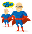 superhero cartoon character vector image vector image