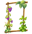 A framed wood with grapes vector | Price: 1 Credit (USD $1)