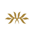 abstract gold ornament logo template design eps 10
