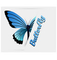 black blue butterfly white background image vector image
