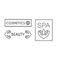 cosmetic beauty spa logo design linear label vector image vector image
