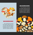 fresh ripe mushrooms in circle and heart-shaped vector image