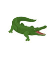 green crocodile with open mouth predatory vector image