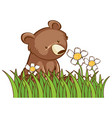 isolated picture cute bear in garden vector image vector image