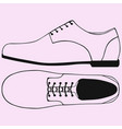 shoes with shoelaces vector image
