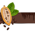 background with cocoa beans vector image