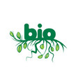bio sign in the form of leaves and grass vector image vector image